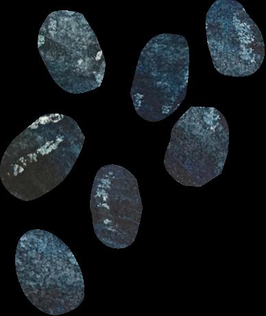 黒平豆のアイコン